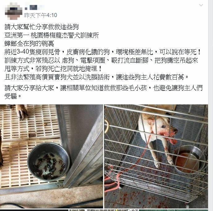 民眾在臉書「爆料公社」控訴桃園市楊梅龍杰警犬訓練中心虐狗。(記者許倬勛翻攝)