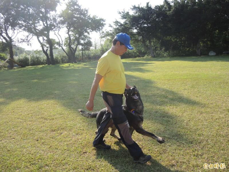陳俊杰稱從事訓犬30多年,訓練中心環境品質有目共睹。(記者許倬勛攝)