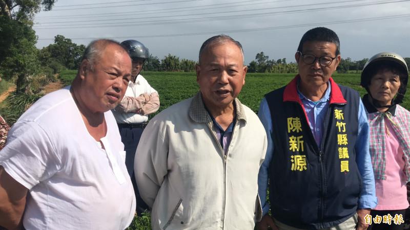 新埔鎮巨埔里70歲的茶農張明煋(中)說,他們張家種茶超過3代,還是第1次碰到茶青沒有製茶廠要買,問題就出在進口茶葉太多了。(記者黃美珠攝)
