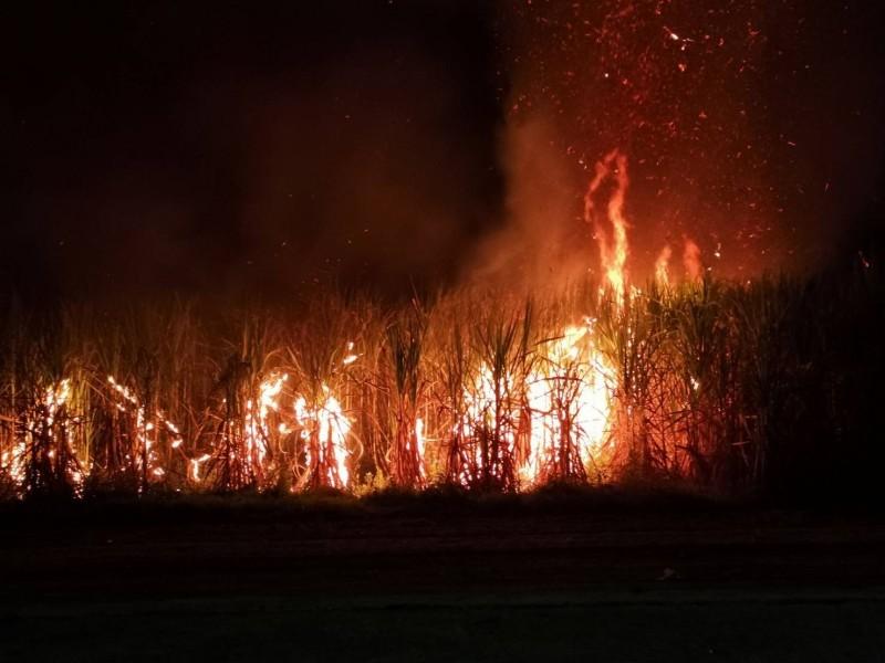 火燒甘蔗園,火勢一發不可收拾。(讀者提供)