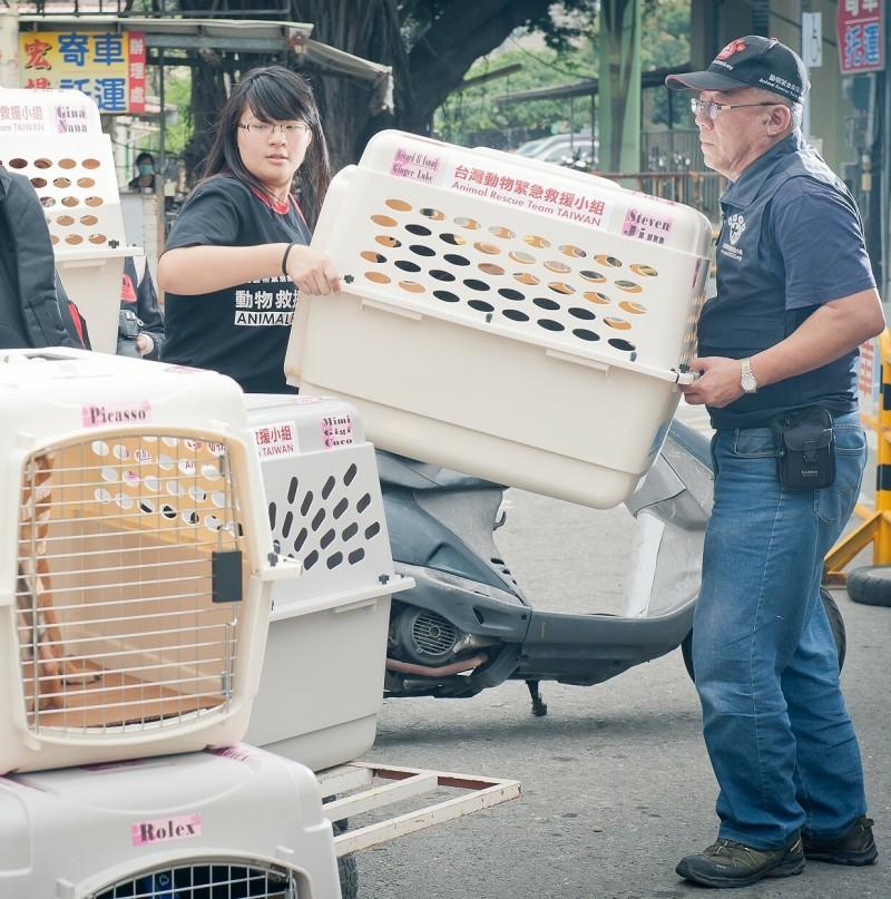 台灣動物緊急救援小組長期運送台灣傷病流浪犬貓遠赴美國及加拿大供當地民眾認養,都會使用符合國際規範的犬貓運輸籠。(台灣動物緊急救援小組提供)