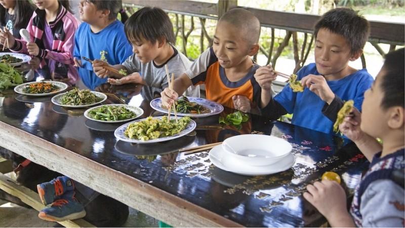 從農田到餐桌,「野菜學校」鼓勵孩子在荒野中「動手做」。(野菜學校提供)