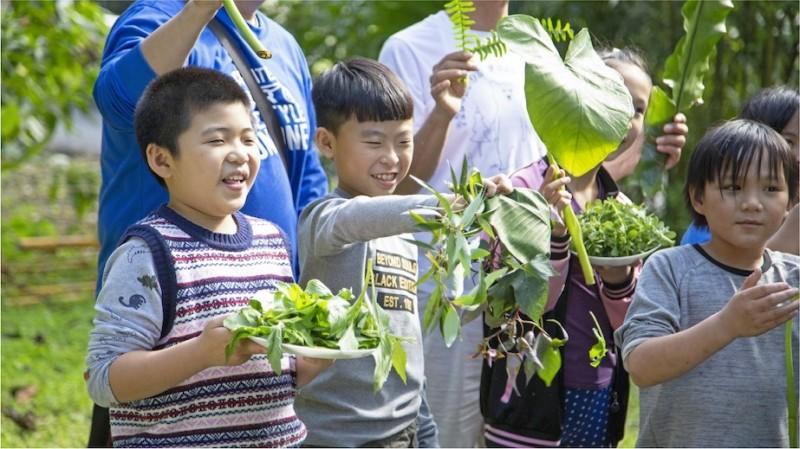 野菜學校是一所沒有圍牆、簡報和分數的大自然學校。(野菜學校提供)