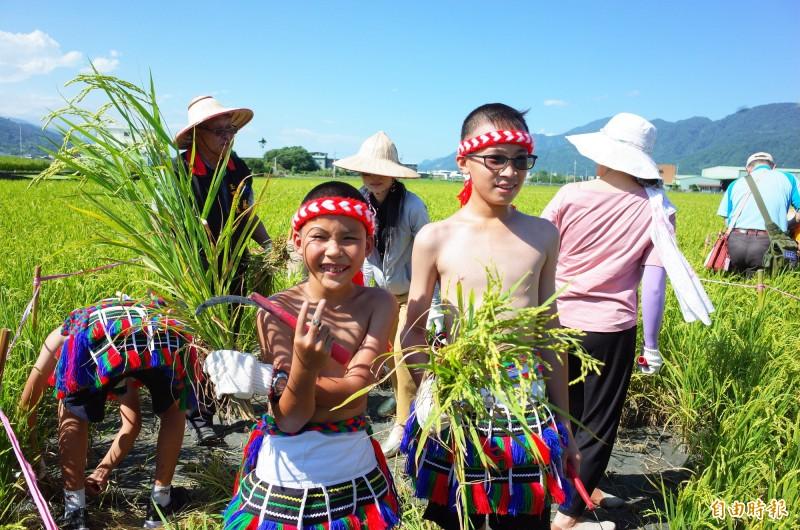 源城國小學童穿上部落傳統服裝,受邀玉里黑熊腳印田的割稻體驗,玩得十分開心。(記者花孟璟攝)