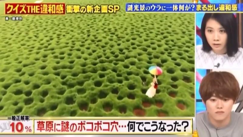 日本節目來賓對於嘉義洞洞草原的成因感到好奇。(黃一盛提供)