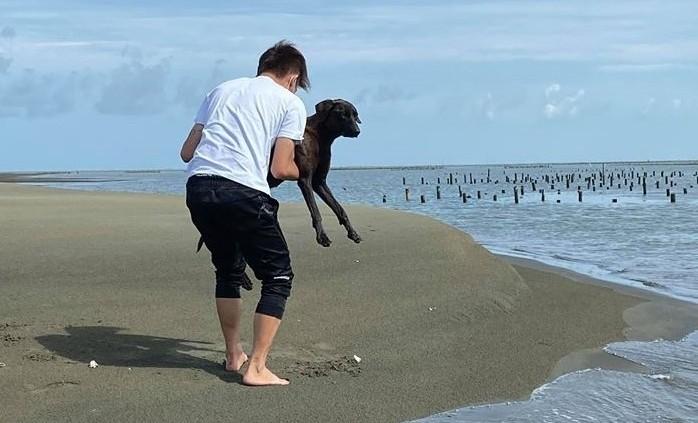 鄭又瑋等人將在外傘頂洲流浪的「海狗」救起。(鄭又瑋提供)