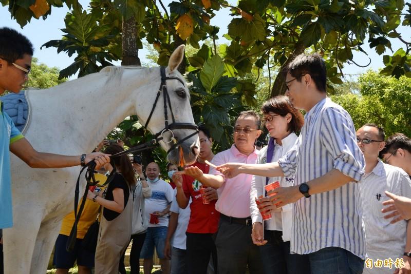 陳其邁至橋頭馬訓中心體驗餵馬。(記者許麗娟攝)