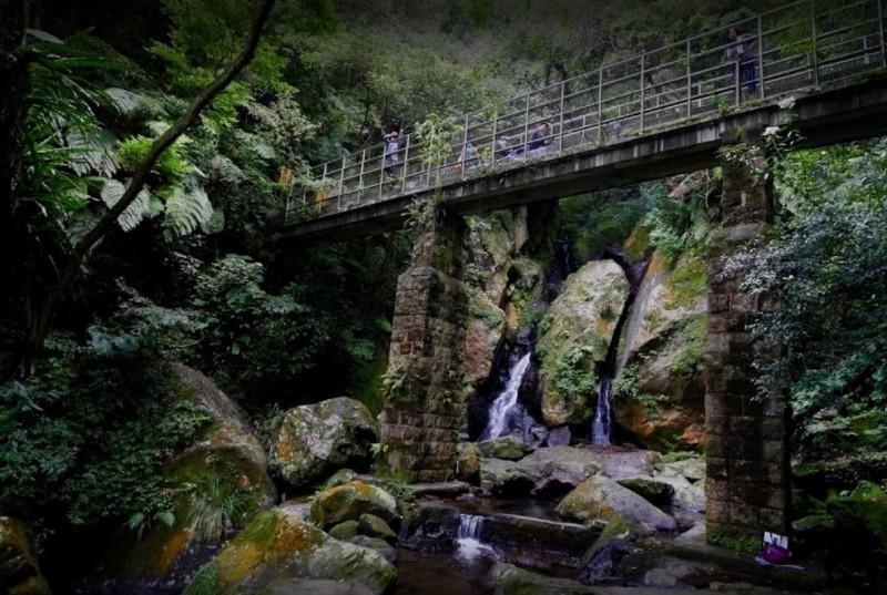 一名六旬婦人今天早上從台北市北投區陽明山大屯瀑布旁橋上墜落。(翻攝GOOGLE地圖)