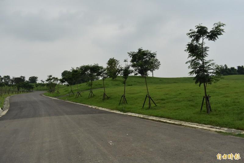 西拉雅官田遊客中心的戶外景觀有大草坪、山丘。(記者楊金城攝)