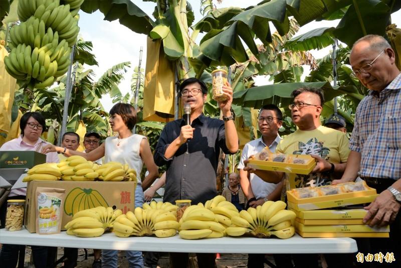 高雄市長陳其邁在香蕉園大力促銷高雄香蕉和加工伴手禮。(記者許麗娟攝)
