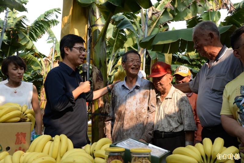 陳其邁笑指從蕉農身上沾滿的「香蕉奶(樹液)」,就可知道是從事蕉農工作。(記者許麗娟攝)