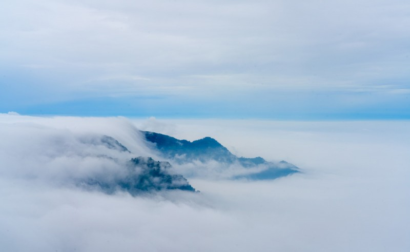 阿里山雲海壯闊美景。(余信賢提供)