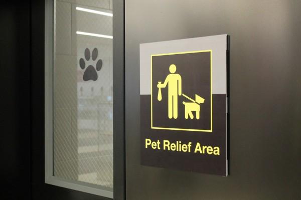 根據美國聯邦法規,今年8月前每年服務超過1萬人次的機場,都需要在航廈內設置「寵物解放區」。(美聯社)