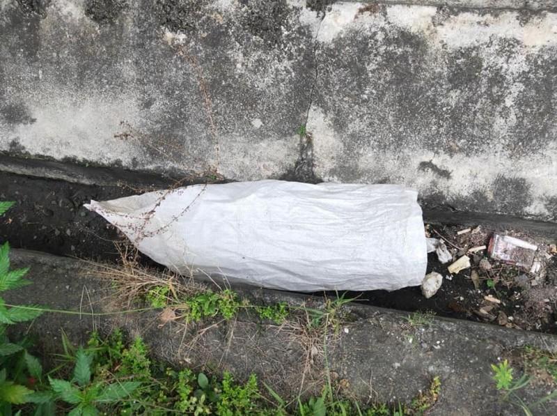 水溝裡竟有6隻剛出生的小狗被裝進袋內丟棄。(圖片擷取自臉書)