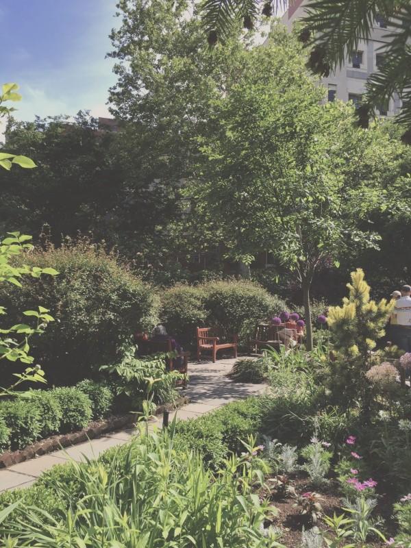 經查證,這對男女所坐的長椅,位置係於於紐約哈德遜街487號的聖路加教堂花園,每天上午8點起對外開放,至日落後關園。(圖擷取自newyork-onmymind)