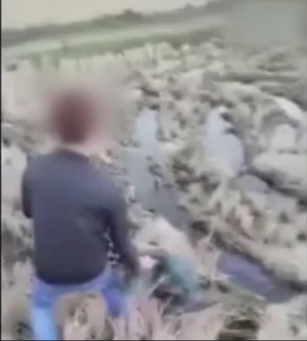 男子將男童拎起來棄置在田裡。(圖擷自影片)