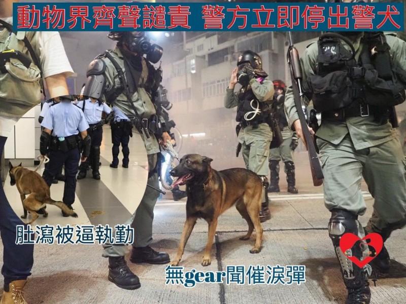 民主派立法會議員毛孟靜、鄺俊宇、譚文豪以及香港動物保護團體代表等人,今日至警察總部投訴課,投訴香港警方虐待警犬。(圖擷取自臉書_香港動物報)