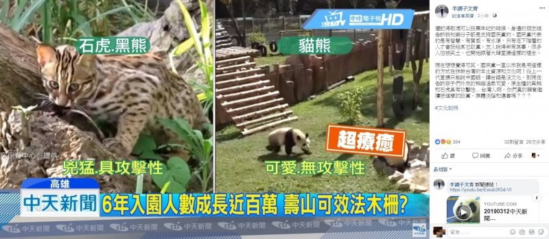 有媒體將石虎、黑熊與貓熊做對比,稱前者兇猛具攻擊性,後者可愛程度超出一大截。(圖翻攝自臉書)