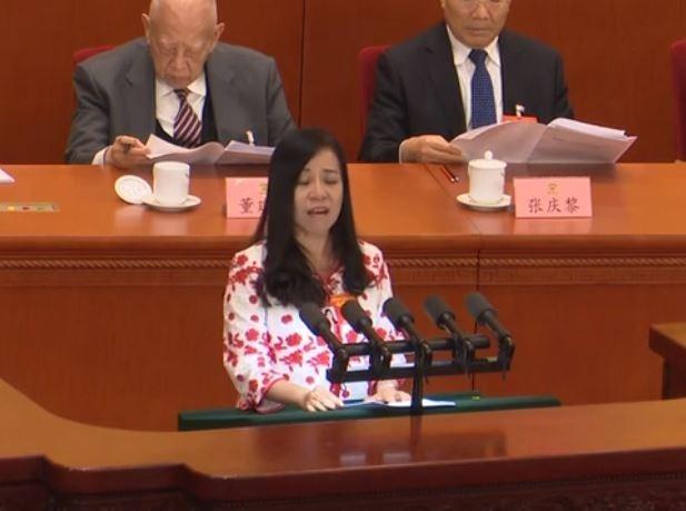 「台籍港區政協」凌友詩在會議中對中國歌功頌德,讓不少台、港網友想吐。(圖擷取自中國新聞網)