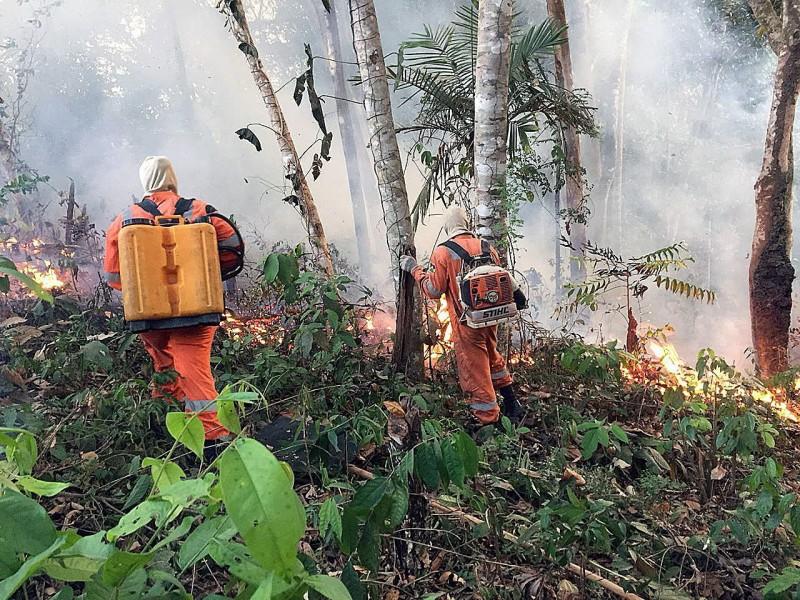 馬克宏提議將亞馬遜雨林大火列入G7峰會討論,波索納洛抗議這是殖民心態。圖為消防隊在亞馬遜雨林撲滅火勢。(歐新社)