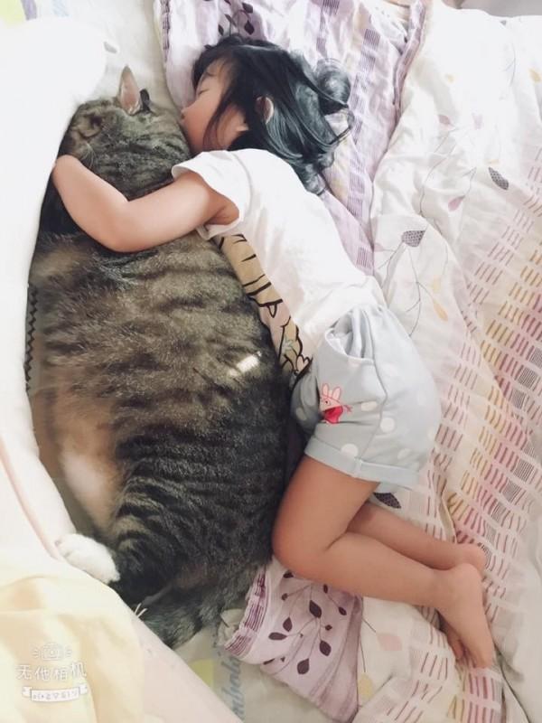 小女孩與寵物貓一起酣然入睡,讓網友們直呼「那是豆豆龍」。(民眾提供)