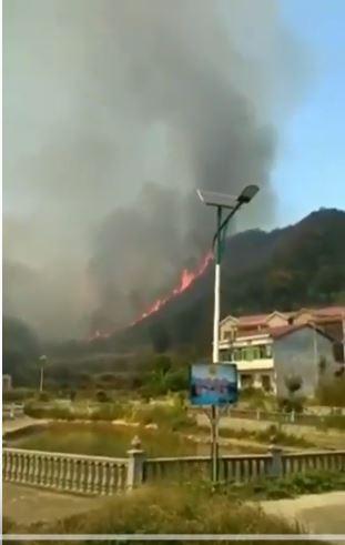江西盧山發生森林大火,連燒3天。(圖擷取自網路)