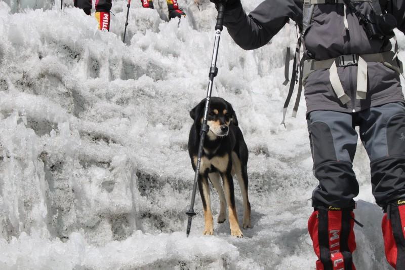 Mera與登山隊一起探險。(圖翻攝自沃高斯基臉書)