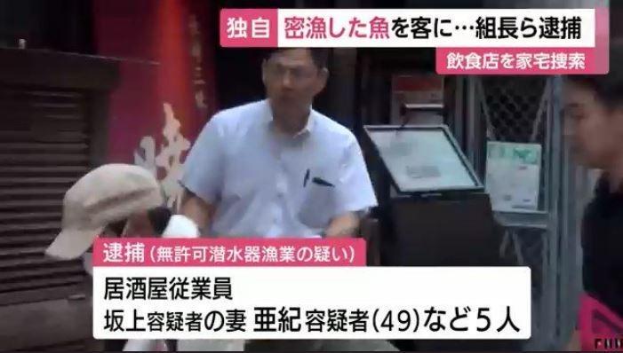 日本有位前黑道大哥坂上明弘,從良與妻子開了一間日式料理店,由於售價低廉、用料實在,因此生意好得嚇嚇叫,沒想到在警方調查後發現,坂上明弘店內使用的低價海鮮,是經「非法獵捕」取得。(圖擷取自Twitter「washima」)
