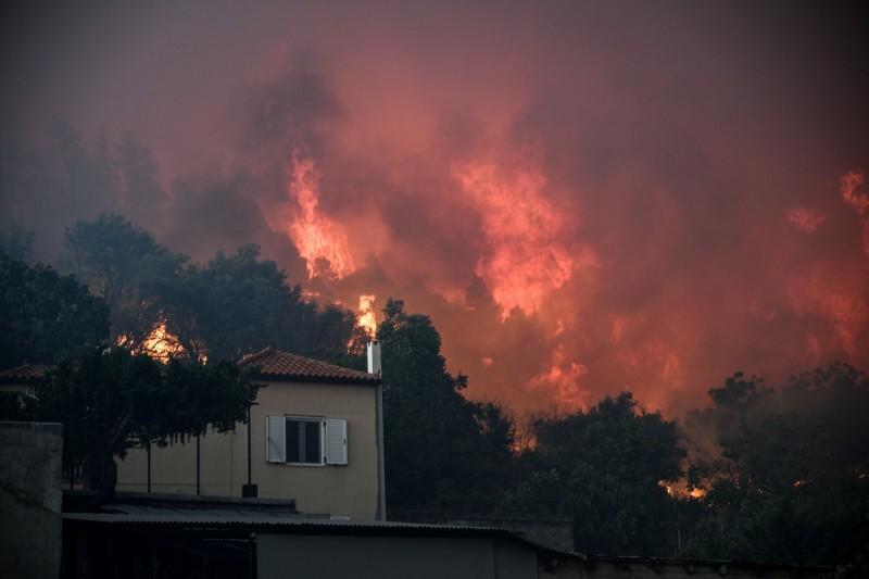 希臘第2大島尤比亞島(Evia)的野火在強風助長下難以控制。(路透)