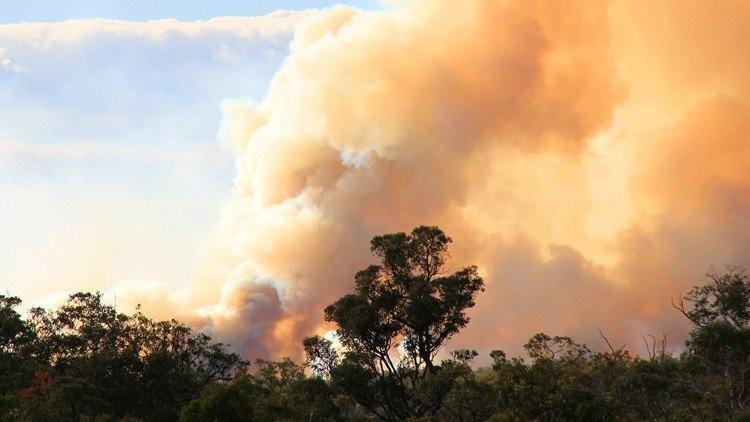 中國四川發生森林大火,昨傳出山區風向改變,野火爆燃,至少24人罹難。(圖擷自微博)