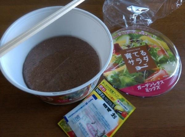 盒子中裝的不是沙拉,而是種子、土和肥料。(圖擷取自Itokichi推特)