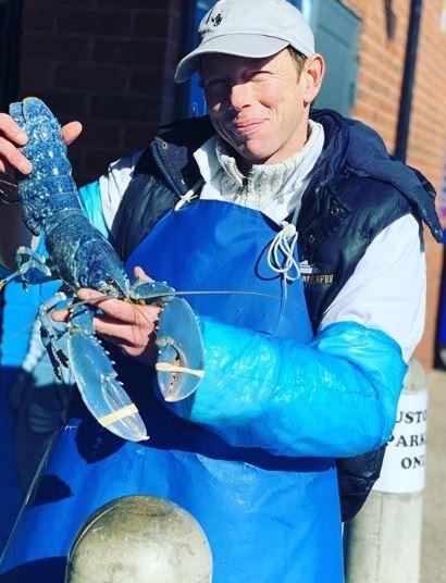 英國一名經營海產店的男子發現漁貨中有一隻鮮藍色的龍蝦。(圖擷自IG)