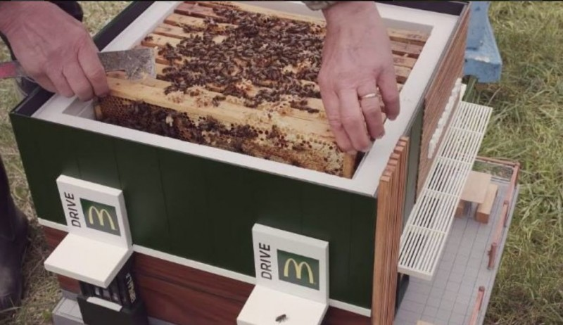 原來這是為了野生蜜蜂所打造的麥當勞造型蜂箱,裡面有一層一層的巢片。(圖擷自@lexifullmer推特)