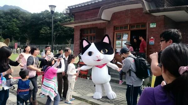猴硐「貓村」享譽盛名,卻成貓咪的棄養地獄。(資料照,記者林欣漢攝)