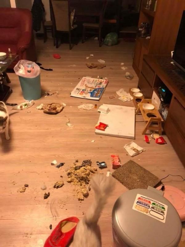 超雷室友才三個月就把租屋處弄得像垃圾場,鍋碗不洗長滿蛆。(圖片取自爆料公社)