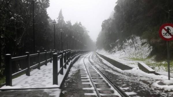 阿里山森鐵祝山線。(資料照,台鐵提供)