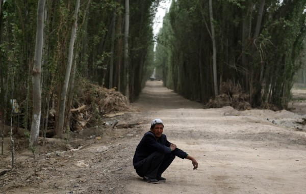 中國新疆省近日公布一條相當特殊的新法規,規定每人每年有無報酬履行植樹3至5棵的義務,不履行植樹義務者將被開罰。圖為新疆莎車縣。(法新社)