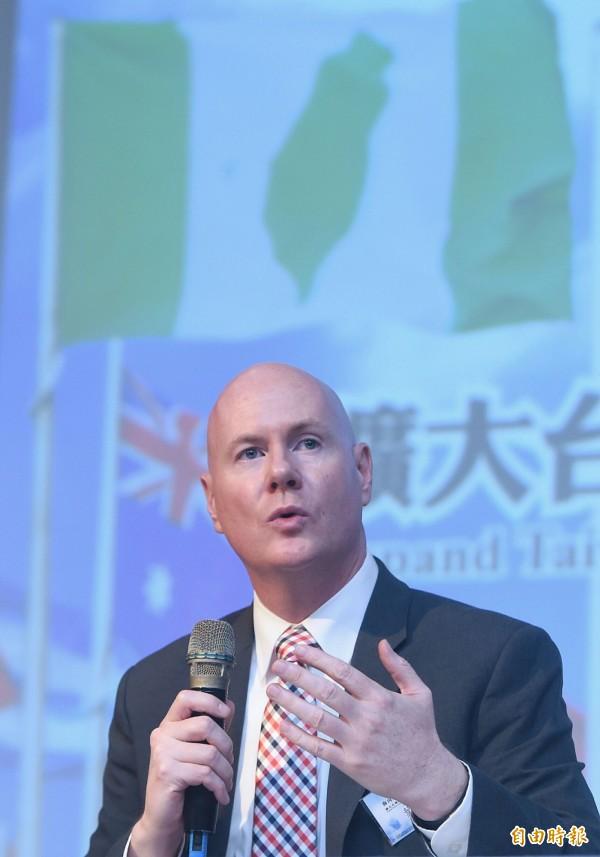 葉望輝表示,台灣尋求國際空間不應僅限於聯合國與世衛組織(WHO)。(記者廖振輝攝)