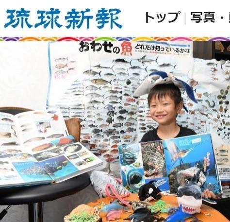 日本沖繩6歲男童安部京志郎,揪出日本「講談社」人氣圖鑑《move危險生物》中圖片誤植,被媒體封為「魚博士」。(圖取自《琉球新報》)