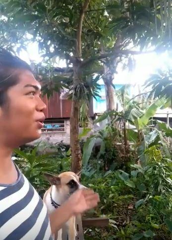 菲律賓男子可以透過一種音頻吸引蚊子過來。(圖擷自YouTube)