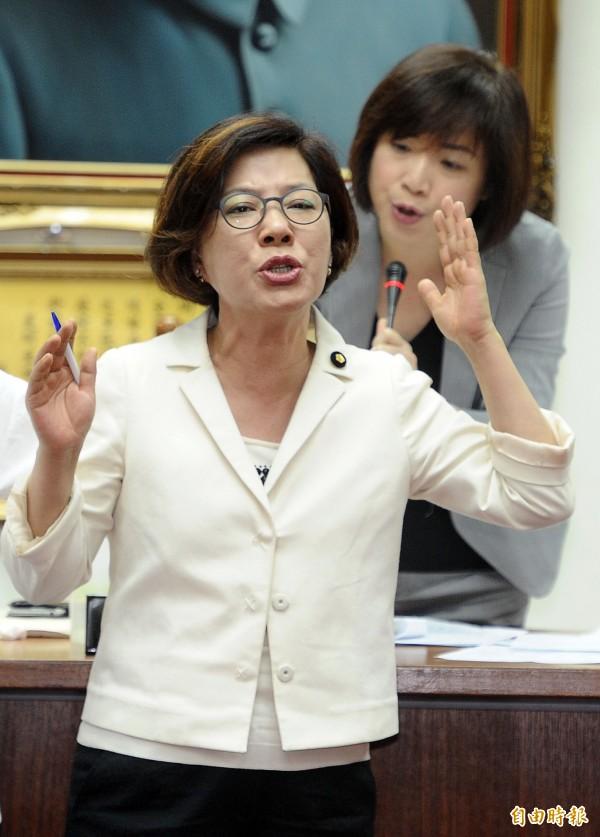 先前已徵召參選的第五選區立委的陳淑慧。(資料照,記者王敏為攝)