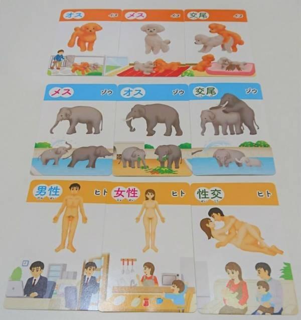 卡牌上印有人類、狗、大象等17種動物的圖案,每種動物都有雄、雌、交配3種卡牌。(圖擷自推特)