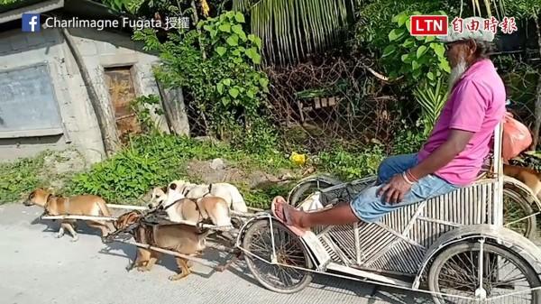 菲律賓一名行動不方便的爺爺自製拉車,讓愛犬們帶著他出門,沒想到卻引來批評。(圖片由Charlimagne Fugata授權提供使用)