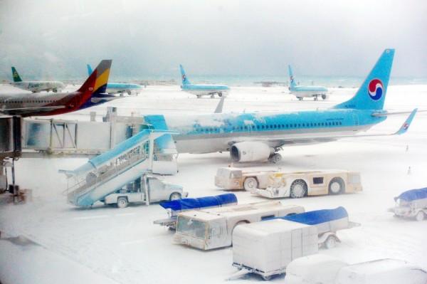 南韓濟州道全境發布大雪預警,降雪破32年來記錄,機場白皚皚一片,多架飛機被雪覆蓋。(路透)