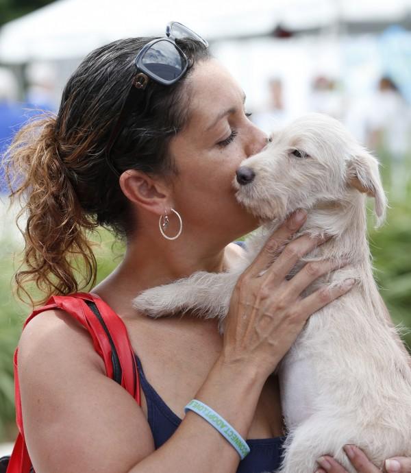 瑞士研究發現,狗狗在掌握一個人的個性後,就可能會作弄他。(美聯社)