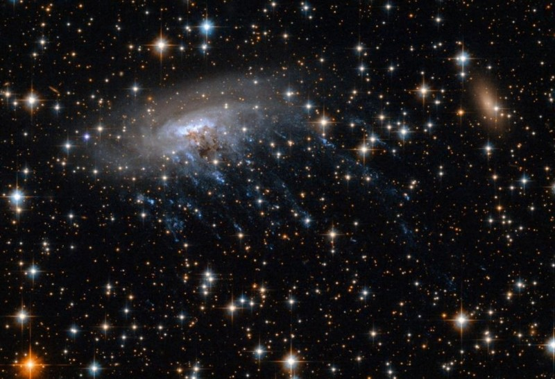 NASA發布外太空超巨大「水母」照片,原來是形狀猶如水母的ESO 137-001星系。(圖擷自NASA Goddard推特)