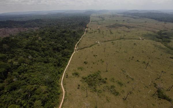 巴西當局為了開採珍貴礦脈,決定把一部份的亞馬遜雨林撤銷保護區資格。圖為2009年,巴西帕拉州的森林砍伐現象,與未被砍伐區域形成強烈對比。(資料照,美聯社)