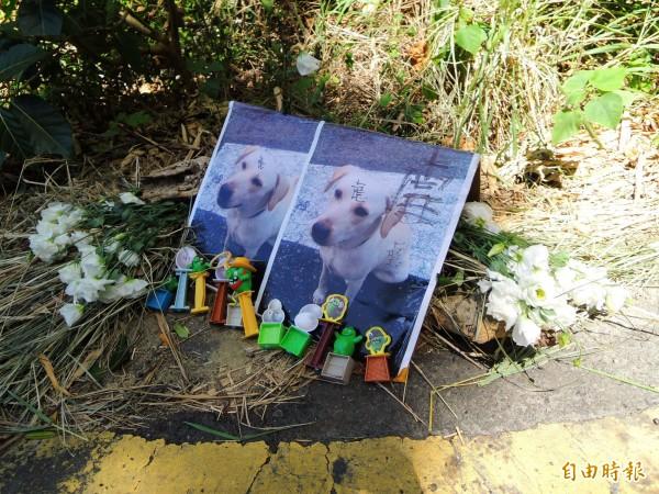 圖為民眾於陸戰隊壽山營區前,擺放鮮花悼念小白。(資料照,記者黃旭磊攝)