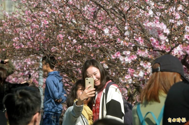 中央氣象局表示,週五北台灣可望見到久違陽光,民眾可把握好天氣出門走走。(資料照,記者林正堃攝)