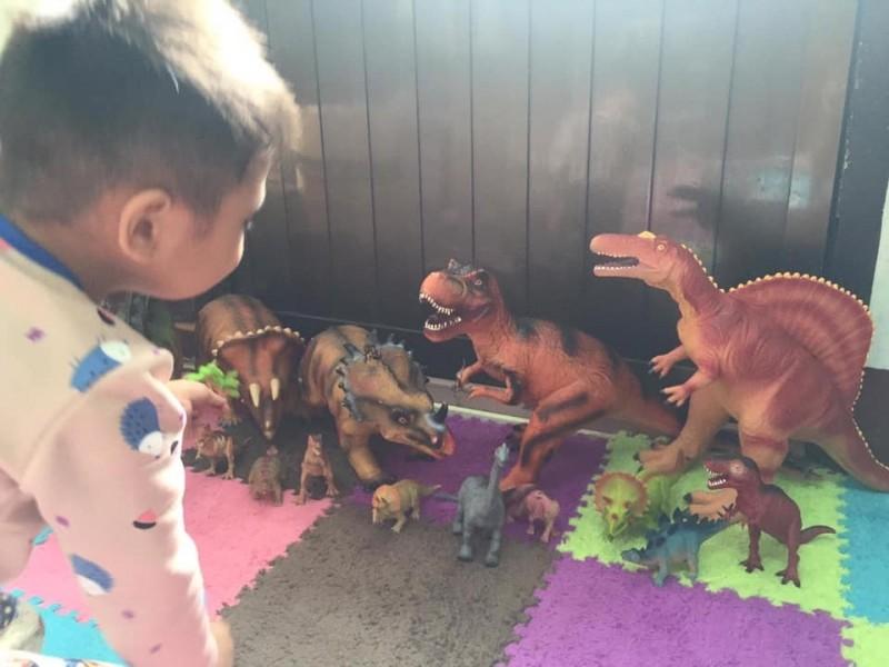 還有媽媽也留言分享自己兒子的恐龍收藏照,「我兒子的恐龍也超多,後面持續一直添購大型的翼龍、重爪龍、甲龍」。(圖擷取自臉書_爆廢公社)